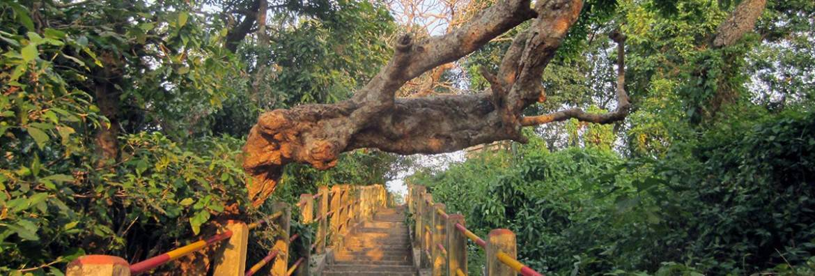 steps-to-bhuvaneswari