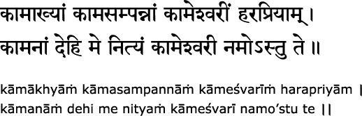 Ten Mahavidya Mantras   JAI MAA